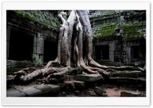 Angkor Wat Temple, Cambodia HD Wide Wallpaper for Widescreen