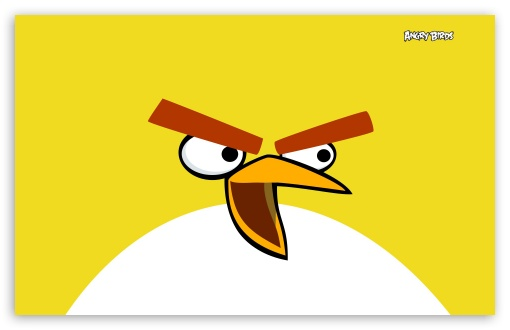 Angry Birds HD wallpaper for Wide 16:10 5:3 Widescreen WHXGA WQXGA WUXGA WXGA WGA ; HD 16:9 High Definition WQHD QWXGA 1080p 900p 720p QHD nHD ; Standard 4:3 3:2 Fullscreen UXGA XGA SVGA DVGA HVGA HQVGA devices ( Apple PowerBook G4 iPhone 4 3G 3GS iPod Touch ) ; iPad 1/2/Mini ; Mobile 4:3 5:3 3:2 16:9 - UXGA XGA SVGA WGA DVGA HVGA HQVGA devices ( Apple PowerBook G4 iPhone 4 3G 3GS iPod Touch ) WQHD QWXGA 1080p 900p 720p QHD nHD ;