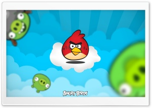 Angry Birds 2013 HD Wide Wallpaper for Widescreen