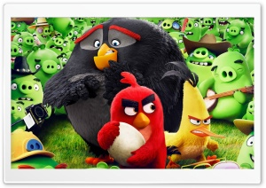 Angry Birds Animation Movie HD Wide Wallpaper for Widescreen