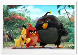 Angry Birds Movie 2016 HD Wide Wallpaper for Widescreen