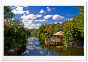 Animal Kingdom At Disney World HD Wide Wallpaper for Widescreen