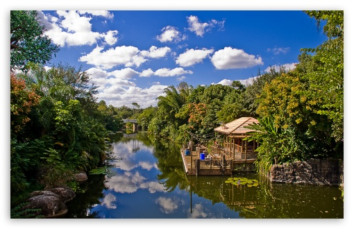Animal Kingdom At Disney World HD wallpaper for Wide 16:10 5:3 Widescreen WHXGA WQXGA WUXGA WXGA WGA ; HD 16:9 High Definition WQHD QWXGA 1080p 900p 720p QHD nHD ; Standard 4:3 5:4 3:2 Fullscreen UXGA XGA SVGA QSXGA SXGA DVGA HVGA HQVGA devices ( Apple PowerBook G4 iPhone 4 3G 3GS iPod Touch ) ; Tablet 1:1 ; iPad 1/2/Mini ; Mobile 4:3 5:3 3:2 16:9 5:4 - UXGA XGA SVGA WGA DVGA HVGA HQVGA devices ( Apple PowerBook G4 iPhone 4 3G 3GS iPod Touch ) WQHD QWXGA 1080p 900p 720p QHD nHD QSXGA SXGA ; Dual 16:10 5:3 4:3 5:4 WHXGA WQXGA WUXGA WXGA WGA UXGA XGA SVGA QSXGA SXGA ;