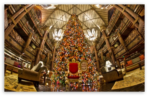 Animal Kingdom Lodge Christmas Tree HD wallpaper for Wide 16:10 5:3 Widescreen WHXGA WQXGA WUXGA WXGA WGA ; HD 16:9 High Definition WQHD QWXGA 1080p 900p 720p QHD nHD ; Standard 4:3 5:4 3:2 Fullscreen UXGA XGA SVGA QSXGA SXGA DVGA HVGA HQVGA devices ( Apple PowerBook G4 iPhone 4 3G 3GS iPod Touch ) ; Tablet 1:1 ; iPad 1/2/Mini ; Mobile 4:3 5:3 3:2 5:4 - UXGA XGA SVGA WGA DVGA HVGA HQVGA devices ( Apple PowerBook G4 iPhone 4 3G 3GS iPod Touch ) QSXGA SXGA ;