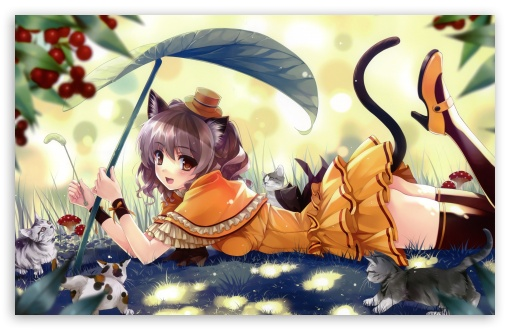 Anime Kittens HD wallpaper for Wide 16:10 5:3 Widescreen WHXGA WQXGA WUXGA WXGA WGA ; HD 16:9 High Definition WQHD QWXGA 1080p 900p 720p QHD nHD ; Standard 4:3 5:4 3:2 Fullscreen UXGA XGA SVGA QSXGA SXGA DVGA HVGA HQVGA devices ( Apple PowerBook G4 iPhone 4 3G 3GS iPod Touch ) ; Tablet 1:1 ; iPad 1/2/Mini ; Mobile 4:3 5:3 3:2 16:9 5:4 - UXGA XGA SVGA WGA DVGA HVGA HQVGA devices ( Apple PowerBook G4 iPhone 4 3G 3GS iPod Touch ) WQHD QWXGA 1080p 900p 720p QHD nHD QSXGA SXGA ;