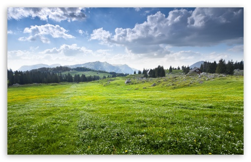 Appenzellerland, Switzerland ❤ 4K UHD Wallpaper for Wide 16:10 5:3 Widescreen WHXGA WQXGA WUXGA WXGA WGA ; 4K UHD 16:9 Ultra High Definition 2160p 1440p 1080p 900p 720p ; Standard 4:3 5:4 3:2 Fullscreen UXGA XGA SVGA QSXGA SXGA DVGA HVGA HQVGA ( Apple PowerBook G4 iPhone 4 3G 3GS iPod Touch ) ; Smartphone 5:3 WGA ; Tablet 1:1 ; iPad 1/2/Mini ; Mobile 4:3 5:3 3:2 16:9 5:4 - UXGA XGA SVGA WGA DVGA HVGA HQVGA ( Apple PowerBook G4 iPhone 4 3G 3GS iPod Touch ) 2160p 1440p 1080p 900p 720p QSXGA SXGA ;