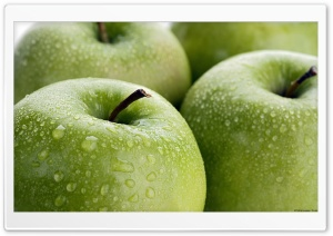 Apple Green HD Wide Wallpaper for Widescreen