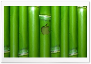 Apple Wallpaper Bamboo HD Wide Wallpaper for Widescreen