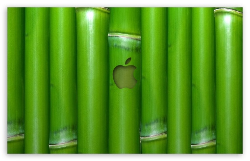Apple Wallpaper Bamboo HD wallpaper for Wide 16:10 5:3 Widescreen WHXGA WQXGA WUXGA WXGA WGA ; HD 16:9 High Definition WQHD QWXGA 1080p 900p 720p QHD nHD ; Standard 4:3 Fullscreen UXGA XGA SVGA ; iPad 1/2/Mini ; Mobile 4:3 5:3 3:2 16:9 - UXGA XGA SVGA WGA DVGA HVGA HQVGA devices ( Apple PowerBook G4 iPhone 4 3G 3GS iPod Touch ) WQHD QWXGA 1080p 900p 720p QHD nHD ;