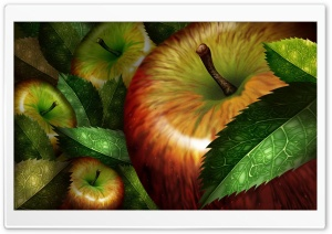 Apples Illustration HD Wide Wallpaper for Widescreen