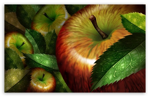 Apples Illustration ❤ 4K UHD Wallpaper for Wide 16:10 5:3 Widescreen WHXGA WQXGA WUXGA WXGA WGA ; 4K UHD 16:9 Ultra High Definition 2160p 1440p 1080p 900p 720p ; Standard 4:3 5:4 3:2 Fullscreen UXGA XGA SVGA QSXGA SXGA DVGA HVGA HQVGA ( Apple PowerBook G4 iPhone 4 3G 3GS iPod Touch ) ; Tablet 1:1 ; iPad 1/2/Mini ; Mobile 4:3 5:3 3:2 16:9 5:4 - UXGA XGA SVGA WGA DVGA HVGA HQVGA ( Apple PowerBook G4 iPhone 4 3G 3GS iPod Touch ) 2160p 1440p 1080p 900p 720p QSXGA SXGA ;