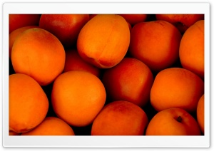 Apricots Fruit Ripe HD Wide Wallpaper for 4K UHD Widescreen desktop & smartphone