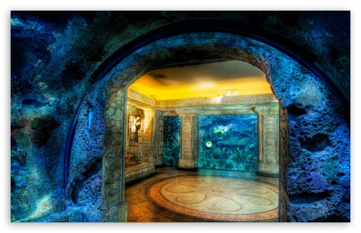 Aquarium HDR HD wallpaper for Wide 16:10 5:3 Widescreen WHXGA WQXGA WUXGA WXGA WGA ; HD 16:9 High Definition WQHD QWXGA 1080p 900p 720p QHD nHD ; Standard 4:3 5:4 3:2 Fullscreen UXGA XGA SVGA QSXGA SXGA DVGA HVGA HQVGA devices ( Apple PowerBook G4 iPhone 4 3G 3GS iPod Touch ) ; Tablet 1:1 ; iPad 1/2/Mini ; Mobile 4:3 5:3 3:2 16:9 5:4 - UXGA XGA SVGA WGA DVGA HVGA HQVGA devices ( Apple PowerBook G4 iPhone 4 3G 3GS iPod Touch ) WQHD QWXGA 1080p 900p 720p QHD nHD QSXGA SXGA ;