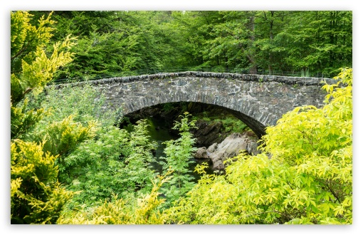 Arch Bridge, Green Trees, Nature ❤ 4K UHD Wallpaper for Wide 16:10 5:3 Widescreen WHXGA WQXGA WUXGA WXGA WGA ; UltraWide 21:9 24:10 ; 4K UHD 16:9 Ultra High Definition 2160p 1440p 1080p 900p 720p ; UHD 16:9 2160p 1440p 1080p 900p 720p ; Standard 4:3 5:4 3:2 Fullscreen UXGA XGA SVGA QSXGA SXGA DVGA HVGA HQVGA ( Apple PowerBook G4 iPhone 4 3G 3GS iPod Touch ) ; Smartphone 16:9 3:2 5:3 2160p 1440p 1080p 900p 720p DVGA HVGA HQVGA ( Apple PowerBook G4 iPhone 4 3G 3GS iPod Touch ) WGA ; Tablet 1:1 ; iPad 1/2/Mini ; Mobile 4:3 5:3 3:2 16:9 5:4 - UXGA XGA SVGA WGA DVGA HVGA HQVGA ( Apple PowerBook G4 iPhone 4 3G 3GS iPod Touch ) 2160p 1440p 1080p 900p 720p QSXGA SXGA ;