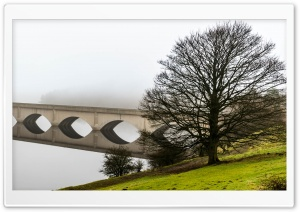 Arch Bridge Reflection, Mist, Leafless Tree HD Wide Wallpaper for 4K UHD Widescreen desktop & smartphone