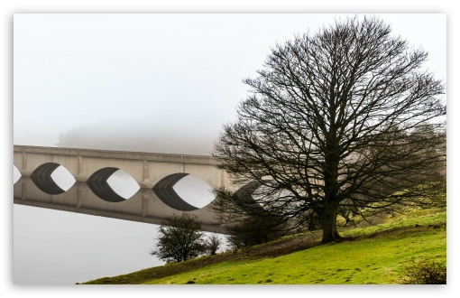Arch Bridge Reflection, Mist, Leafless Tree UltraHD Wallpaper for Wide 16:10 5:3 Widescreen WHXGA WQXGA WUXGA WXGA WGA ; UltraWide 21:9 24:10 ; 8K UHD TV 16:9 Ultra High Definition 2160p 1440p 1080p 900p 720p ; Standard 4:3 5:4 3:2 Fullscreen UXGA XGA SVGA QSXGA SXGA DVGA HVGA HQVGA ( Apple PowerBook G4 iPhone 4 3G 3GS iPod Touch ) ; Smartphone 16:9 3:2 5:3 2160p 1440p 1080p 900p 720p DVGA HVGA HQVGA ( Apple PowerBook G4 iPhone 4 3G 3GS iPod Touch ) WGA ; Tablet 1:1 ; iPad 1/2/Mini ; Mobile 4:3 5:3 3:2 16:9 5:4 - UXGA XGA SVGA WGA DVGA HVGA HQVGA ( Apple PowerBook G4 iPhone 4 3G 3GS iPod Touch ) 2160p 1440p 1080p 900p 720p QSXGA SXGA ; Dual 16:10 5:3 16:9 4:3 5:4 3:2 WHXGA WQXGA WUXGA WXGA WGA 2160p 1440p 1080p 900p 720p UXGA XGA SVGA QSXGA SXGA DVGA HVGA HQVGA ( Apple PowerBook G4 iPhone 4 3G 3GS iPod Touch ) ;