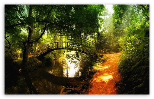 Arched Bridge Reflections HD wallpaper for Standard 4:3 5:4 Fullscreen UXGA XGA SVGA QSXGA SXGA ; Wide 16:10 5:3 Widescreen WHXGA WQXGA WUXGA WXGA WGA ; HD 16:9 High Definition WQHD QWXGA 1080p 900p 720p QHD nHD ; Other 3:2 DVGA HVGA HQVGA devices ( Apple PowerBook G4 iPhone 4 3G 3GS iPod Touch ) ; Mobile VGA WVGA iPhone iPad PSP Phone - VGA QVGA Smartphone ( PocketPC GPS iPod Zune BlackBerry HTC Samsung LG Nokia Eten Asus ) WVGA WQVGA Smartphone ( HTC Samsung Sony Ericsson LG Vertu MIO ) HVGA Smartphone ( Apple iPhone iPod BlackBerry HTC Samsung Nokia ) Sony PSP Zune HD Zen ;
