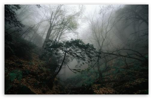 armenia k7 kapan syunik forest hayk wallpapers