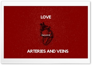 Arteries and Veins HD Wide Wallpaper for Widescreen
