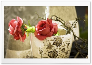 Artificial Roses HD Wide Wallpaper for Widescreen