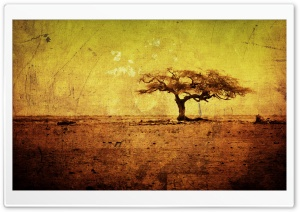Artistic Texture HD Wide Wallpaper for Widescreen