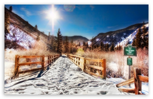 Aspen Trail, Winter HD wallpaper for Wide 16:10 5:3 Widescreen WHXGA WQXGA WUXGA WXGA WGA ; HD 16:9 High Definition WQHD QWXGA 1080p 900p 720p QHD nHD ; Standard 4:3 5:4 3:2 Fullscreen UXGA XGA SVGA QSXGA SXGA DVGA HVGA HQVGA devices ( Apple PowerBook G4 iPhone 4 3G 3GS iPod Touch ) ; Tablet 1:1 ; iPad 1/2/Mini ; Mobile 4:3 5:3 3:2 16:9 5:4 - UXGA XGA SVGA WGA DVGA HVGA HQVGA devices ( Apple PowerBook G4 iPhone 4 3G 3GS iPod Touch ) WQHD QWXGA 1080p 900p 720p QHD nHD QSXGA SXGA ;
