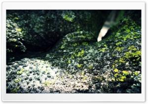 atuka`s art HD Wide Wallpaper for Widescreen