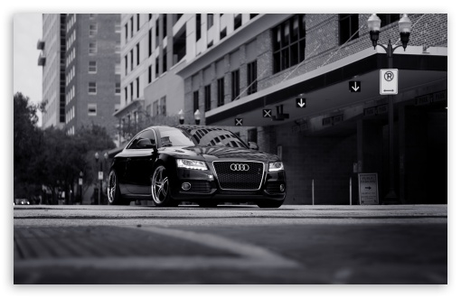 Audi A5 Black And White HD wallpaper for Wide 16:10 5:3 Widescreen WHXGA WQXGA WUXGA WXGA WGA ; HD 16:9 High Definition WQHD QWXGA 1080p 900p 720p QHD nHD ; Standard 4:3 5:4 3:2 Fullscreen UXGA XGA SVGA QSXGA SXGA DVGA HVGA HQVGA devices ( Apple PowerBook G4 iPhone 4 3G 3GS iPod Touch ) ; Tablet 1:1 ; iPad 1/2/Mini ; Mobile 4:3 5:3 3:2 16:9 5:4 - UXGA XGA SVGA WGA DVGA HVGA HQVGA devices ( Apple PowerBook G4 iPhone 4 3G 3GS iPod Touch ) WQHD QWXGA 1080p 900p 720p QHD nHD QSXGA SXGA ;