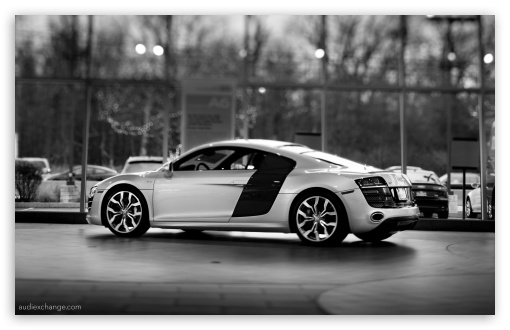 Audi R8 V10 5.2 FSI Coupe HD wallpaper for Wide 16:10 5:3 Widescreen WHXGA WQXGA WUXGA WXGA WGA ; HD 16:9 High Definition WQHD QWXGA 1080p 900p 720p QHD nHD ; UHD 16:9 WQHD QWXGA 1080p 900p 720p QHD nHD ; Standard 4:3 3:2 Fullscreen UXGA XGA SVGA DVGA HVGA HQVGA devices ( Apple PowerBook G4 iPhone 4 3G 3GS iPod Touch ) ; iPad 1/2/Mini ; Mobile 4:3 5:3 3:2 16:9 - UXGA XGA SVGA WGA DVGA HVGA HQVGA devices ( Apple PowerBook G4 iPhone 4 3G 3GS iPod Touch ) WQHD QWXGA 1080p 900p 720p QHD nHD ; Dual 5:4 QSXGA SXGA ;