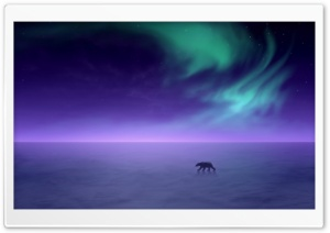 Aurora Borealis HD Wide Wallpaper for Widescreen