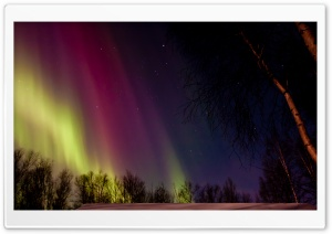 Aurora Borealis Rainbow Colors HD Wide Wallpaper for 4K UHD Widescreen desktop & smartphone