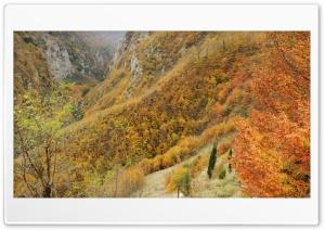 Autumn - Peyman Jari Ultra HD Wallpaper for 4K UHD Widescreen desktop, tablet & smartphone