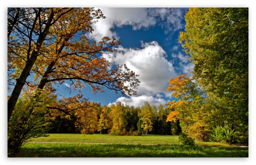 Autumn Afternoon HD wallpaper for Wide 16:10 5:3 Widescreen WHXGA WQXGA WUXGA WXGA WGA ; HD 16:9 High Definition WQHD QWXGA 1080p 900p 720p QHD nHD ; Standard 4:3 5:4 3:2 Fullscreen UXGA XGA SVGA QSXGA SXGA DVGA HVGA HQVGA devices ( Apple PowerBook G4 iPhone 4 3G 3GS iPod Touch ) ; Tablet 1:1 ; iPad 1/2/Mini ; Mobile 4:3 5:3 3:2 16:9 5:4 - UXGA XGA SVGA WGA DVGA HVGA HQVGA devices ( Apple PowerBook G4 iPhone 4 3G 3GS iPod Touch ) WQHD QWXGA 1080p 900p 720p QHD nHD QSXGA SXGA ;