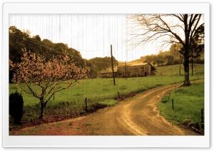 Autumn Afternoon Ultra HD Wallpaper for 4K UHD Widescreen desktop, tablet & smartphone