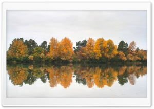 Autumn at the River HD Wide Wallpaper for Widescreen