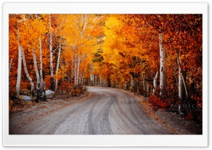 Autumn, California HD Wide Wallpaper for Widescreen