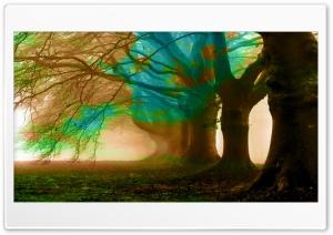Autumn Colours Ultra HD Wallpaper for 4K UHD Widescreen desktop, tablet & smartphone