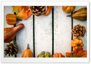 Autumn Decoration HD Wide Wallpaper for Widescreen