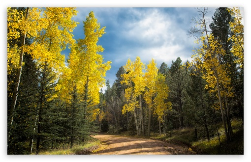 Autumn Drive in Colorado ❤ 4K UHD Wallpaper for Wide 16:10 5:3 Widescreen WHXGA WQXGA WUXGA WXGA WGA ; UltraWide 21:9 ; 4K UHD 16:9 Ultra High Definition 2160p 1440p 1080p 900p 720p ; Standard 4:3 5:4 3:2 Fullscreen UXGA XGA SVGA QSXGA SXGA DVGA HVGA HQVGA ( Apple PowerBook G4 iPhone 4 3G 3GS iPod Touch ) ; Smartphone 16:9 3:2 5:3 2160p 1440p 1080p 900p 720p DVGA HVGA HQVGA ( Apple PowerBook G4 iPhone 4 3G 3GS iPod Touch ) WGA ; Tablet 1:1 ; iPad 1/2/Mini ; Mobile 4:3 5:3 3:2 16:9 5:4 - UXGA XGA SVGA WGA DVGA HVGA HQVGA ( Apple PowerBook G4 iPhone 4 3G 3GS iPod Touch ) 2160p 1440p 1080p 900p 720p QSXGA SXGA ;
