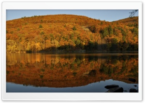 Autumn Foliage In Brattleboro HD Wide Wallpaper for 4K UHD Widescreen desktop & smartphone