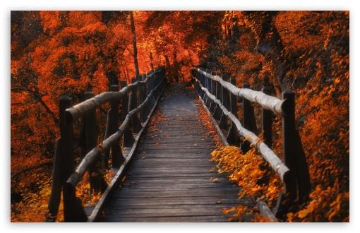 Download Autumn, Hike UltraHD Wallpaper
