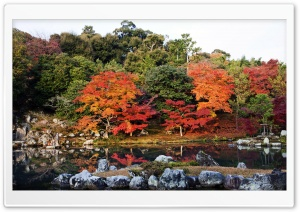 Autumn, Japan HD Wide Wallpaper for Widescreen