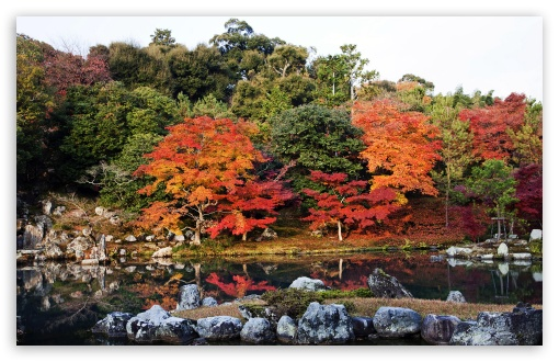 Autumn, Japan ❤ 4K UHD Wallpaper for Wide 16:10 5:3 Widescreen WHXGA WQXGA WUXGA WXGA WGA ; Standard 4:3 5:4 3:2 Fullscreen UXGA XGA SVGA QSXGA SXGA DVGA HVGA HQVGA ( Apple PowerBook G4 iPhone 4 3G 3GS iPod Touch ) ; Tablet 1:1 ; iPad 1/2/Mini ; Mobile 4:3 5:3 3:2 5:4 - UXGA XGA SVGA WGA DVGA HVGA HQVGA ( Apple PowerBook G4 iPhone 4 3G 3GS iPod Touch ) QSXGA SXGA ;