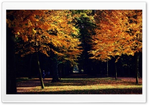 Autumn Landscape HD Wide Wallpaper for Widescreen