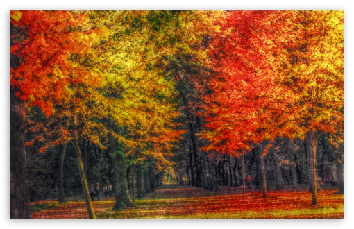 Autumn Landscape HDR HD wallpaper for Wide 16:10 5:3 Widescreen WHXGA WQXGA WUXGA WXGA WGA ; HD 16:9 High Definition WQHD QWXGA 1080p 900p 720p QHD nHD ; Standard 4:3 Fullscreen UXGA XGA SVGA ; iPad 1/2/Mini ; Mobile 4:3 5:3 3:2 16:9 - UXGA XGA SVGA WGA DVGA HVGA HQVGA devices ( Apple PowerBook G4 iPhone 4 3G 3GS iPod Touch ) WQHD QWXGA 1080p 900p 720p QHD nHD ;