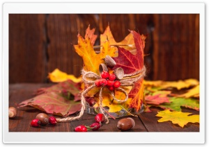 Autumn Leaves, Rowan berries, Acorns, Rose Hips on a wooden background Ultra HD Wallpaper for 4K UHD Widescreen desktop, tablet & smartphone