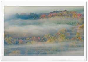 Autumn Mist HD Wide Wallpaper for Widescreen