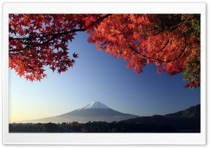 Autumn, Mount Fuji, Japan HD Wide Wallpaper for Widescreen