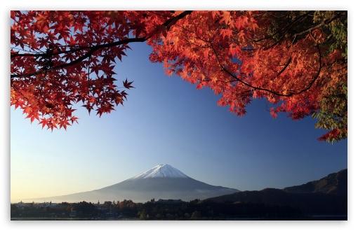 Autumn mount fuji japan 4k hd desktop wallpaper for 4k ultra download autumn mount fuji japan hd wallpaper voltagebd Choice Image