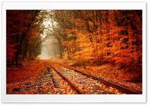 Autumn Railway HD Wide Wallpaper for Widescreen